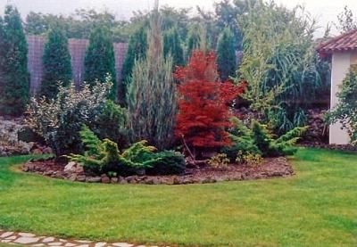 Gödöllői Salix Kft.