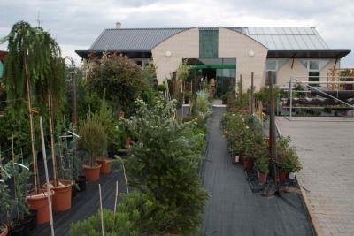 Kertdeco Kertészeti Áruház és Faiskola