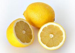 Citrom (<span>Citrus x limon</span>)